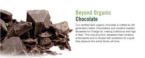 Beyond Organic Dark Chocolate