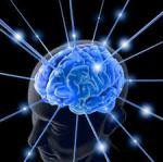 brain walls