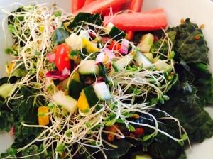 Daniel Diet Salad